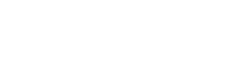 Integra Design Group Architects & Engineers, PSC